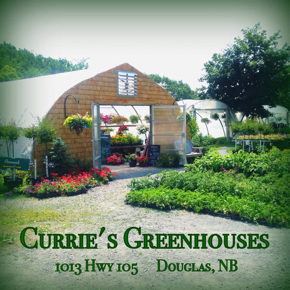 CurriesGreenhouses