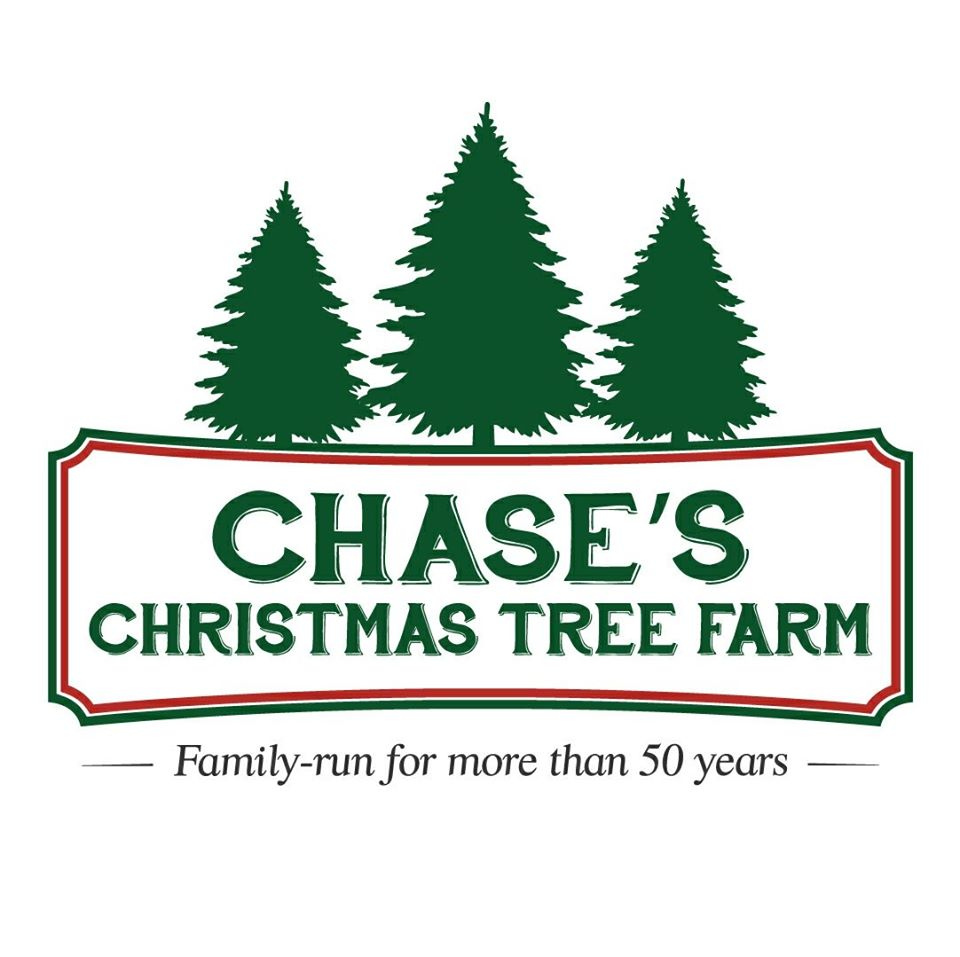 Christmas Tree Farm Southern California: Chase's Christmas Tree Farm